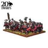 Dwarf Shield Breakers Regiment (20)