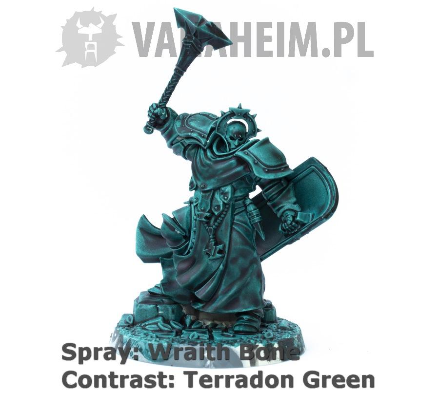 Citadel Contrast: Terradon Turquoise on Wraith Bone