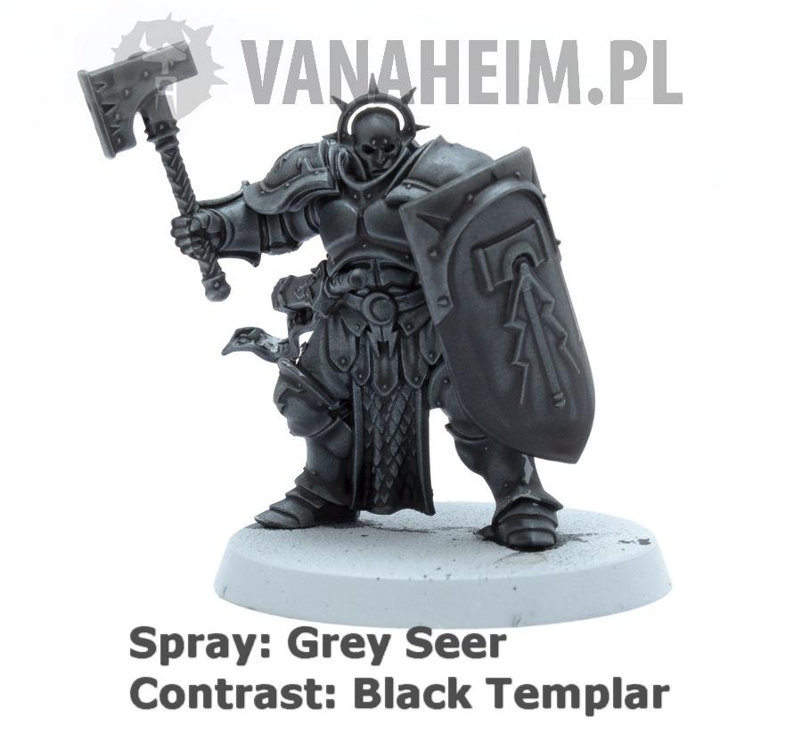 Citadel Contrast: Black Templar on Grey Seer