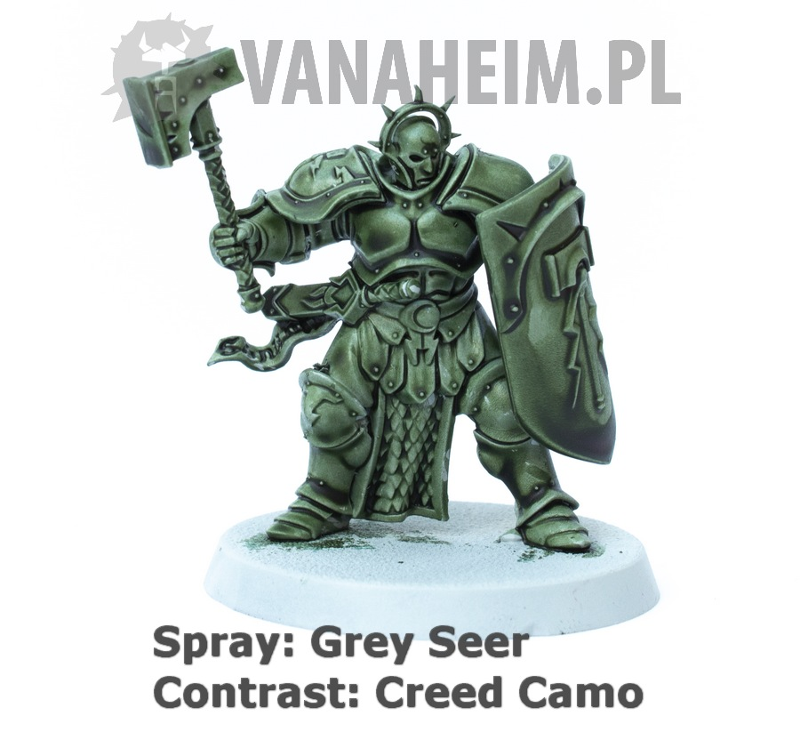 Citadel Contrast: Creed Camo on Grey Seer